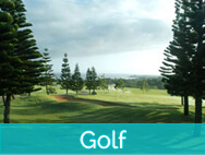 Honokeana Cove activities - golf