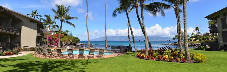 Honokeana Cove Specials