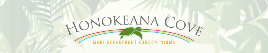 Honokeana Cove Rental Association LLC
