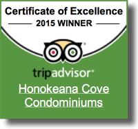 Honokeana Cove Reviews - TripAdvisor